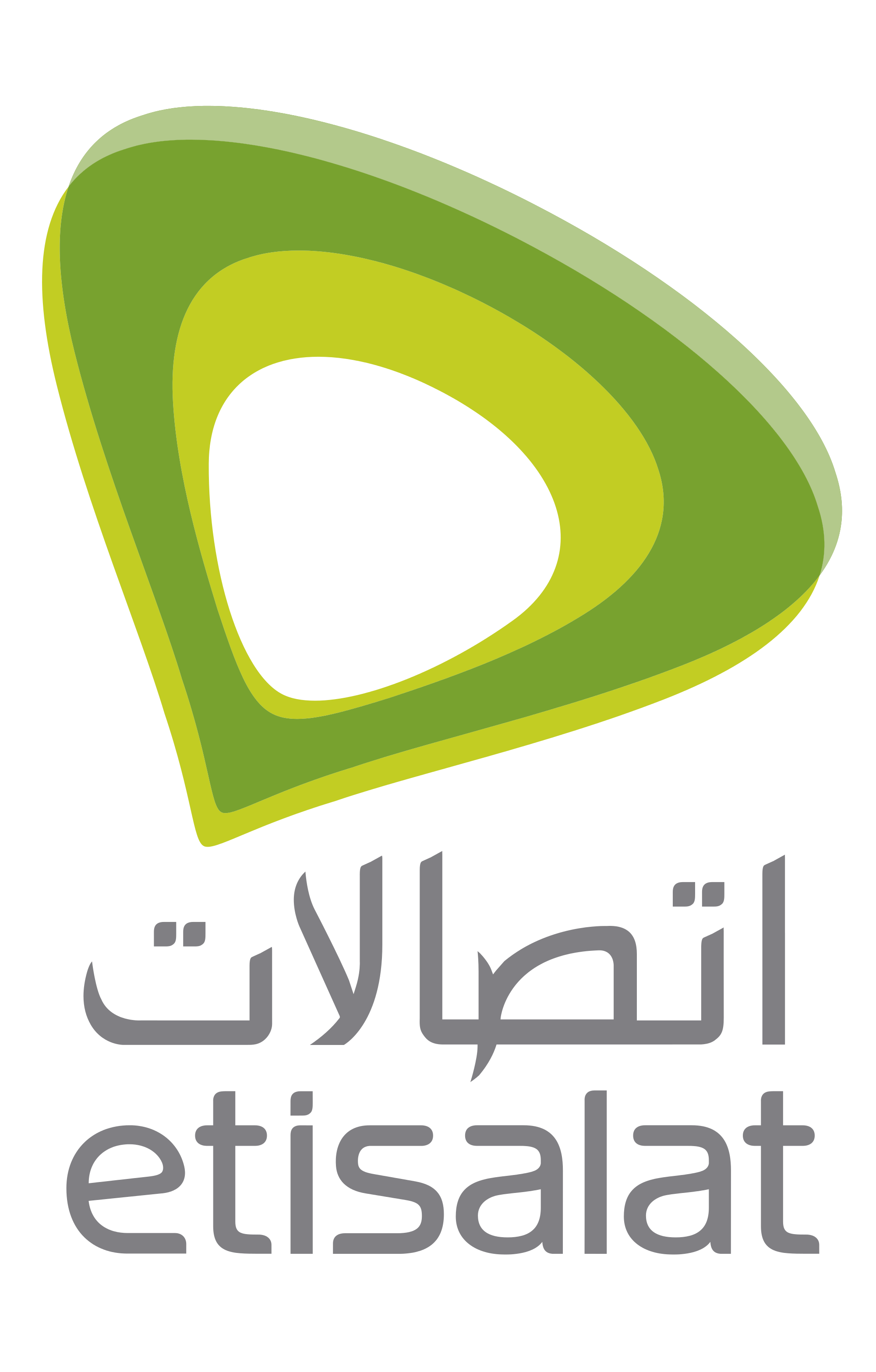 30. Etisalat Group