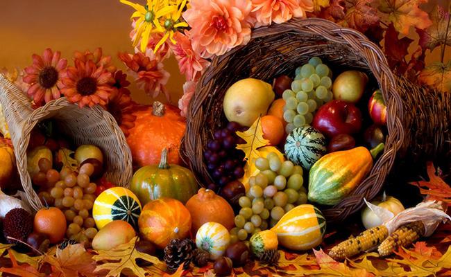 ThanksgivingCornucopia_BlogPhoto