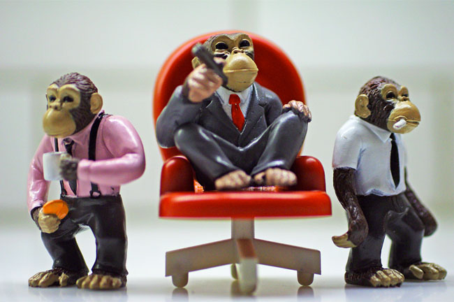 Monkey Figurines in Business Attire