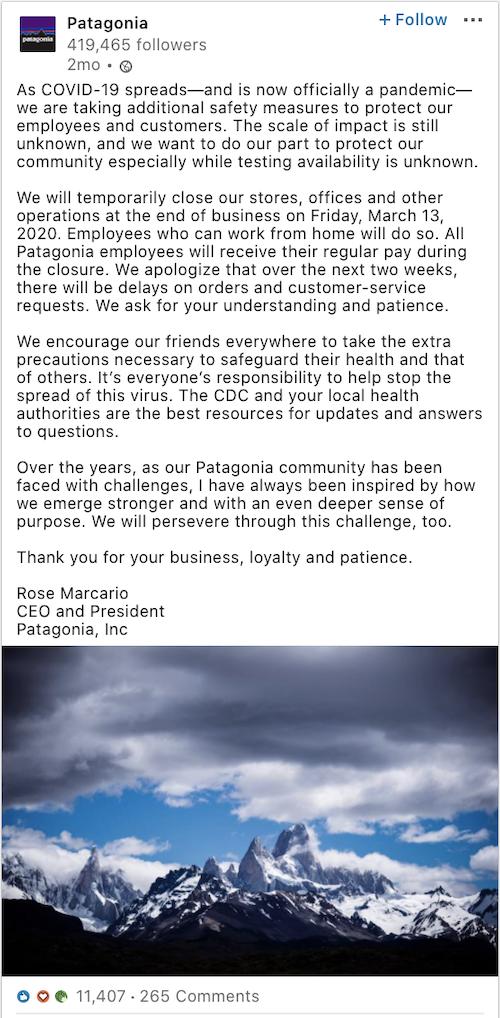 Patagonia LinkedIn post
