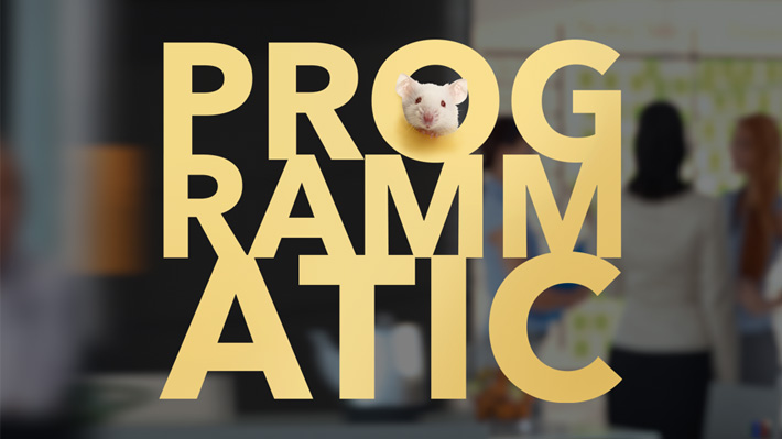 The irony of in-house Programmatic | Starting to bring programmatic