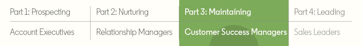 the four networks of sales part 3 customer success managers
