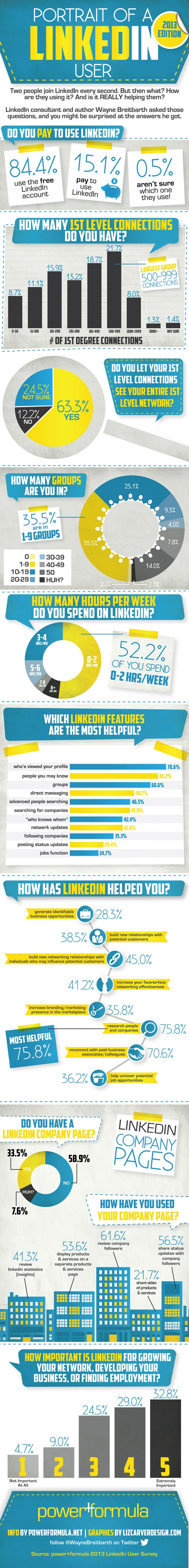 Infographic-portrait of a linkedin user