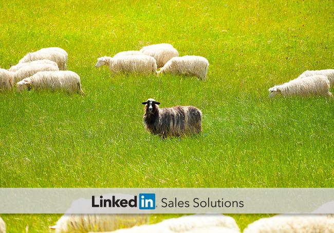 sales-management-tips