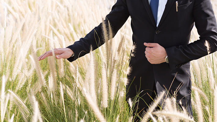 Businessman Touching Tall Grass in a Field