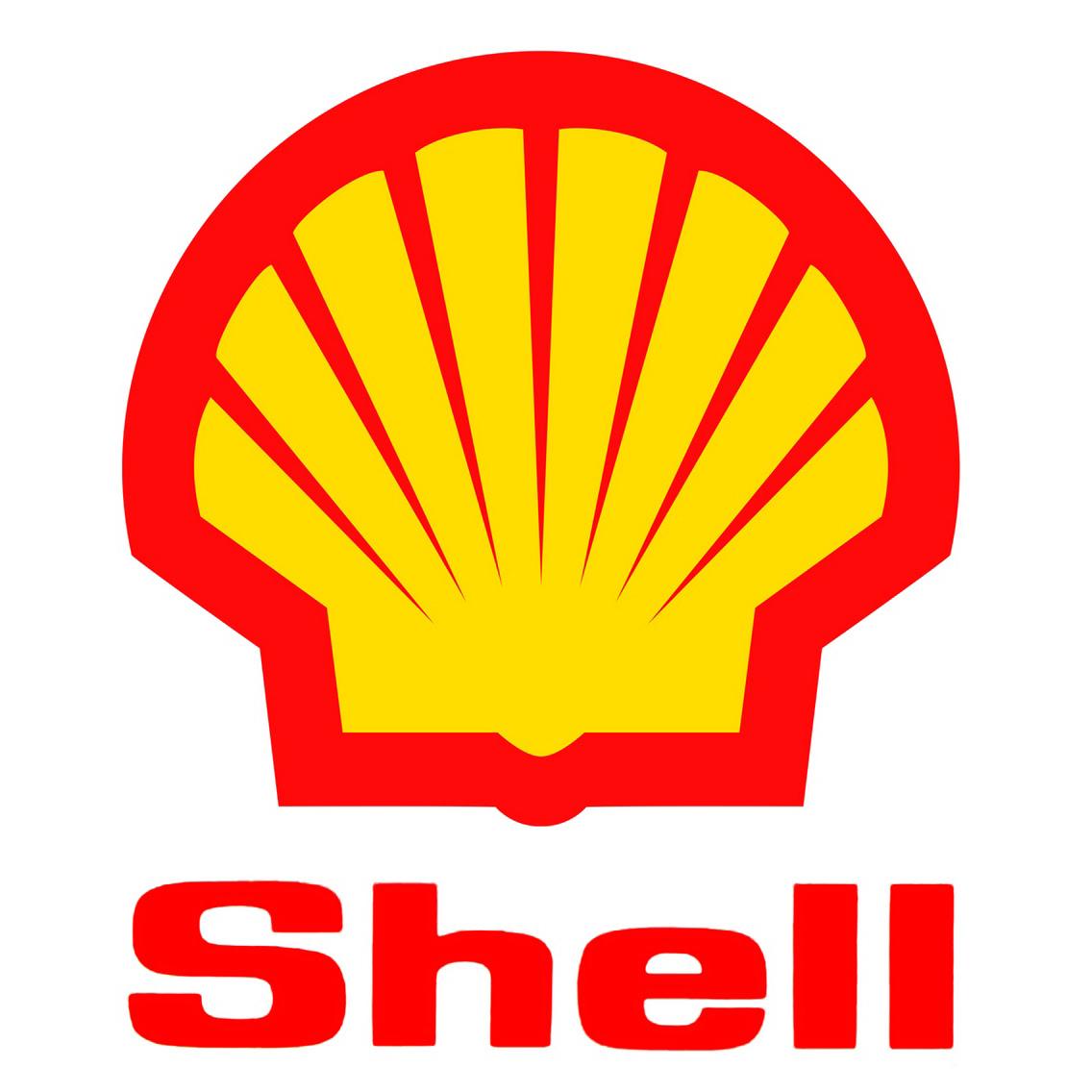 11. Shell