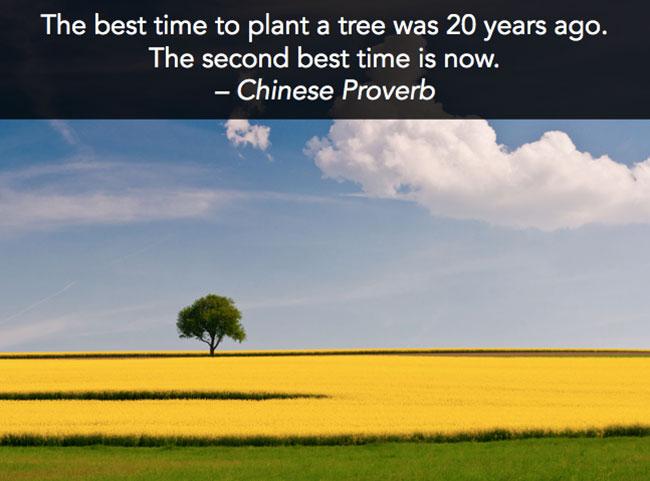 quote15web