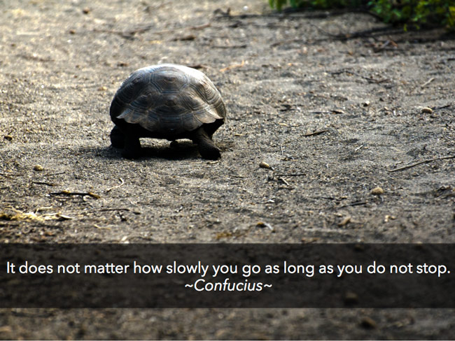 confucious-quote
