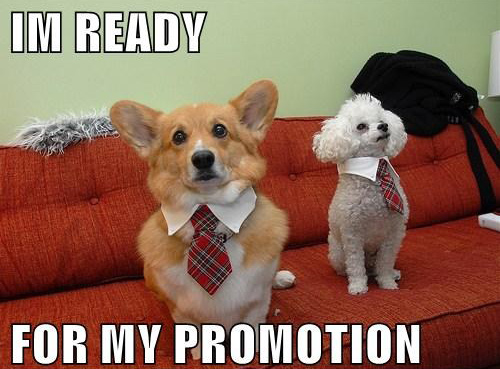 ready-for-promotion