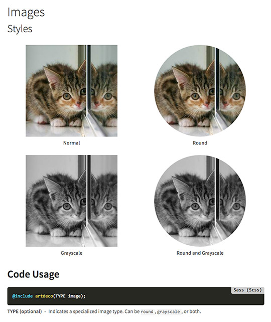 Kitten Image Examples