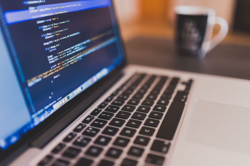 The Fastest Growing Programming Language in the World Is