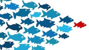 leadership-blog