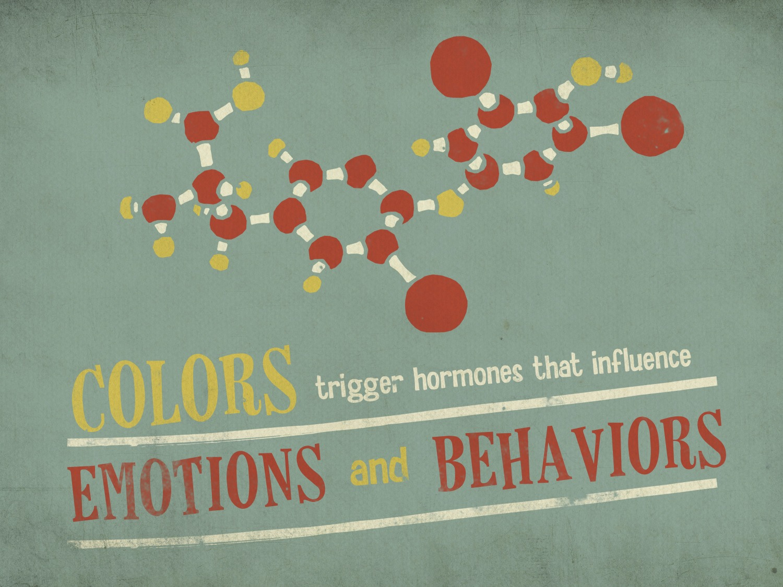 color scheme presentation design